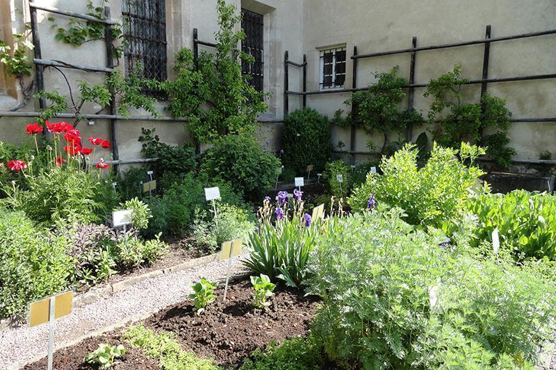 Der Kräutergarten im Kloster Bebenhausen; Foto: Staatsanzeiger für Baden-Württemberg GmbH, Barbara Erbsen-Heim