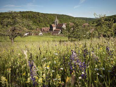 Kloster und Schloss Bebenhausen, Wiese vor dem Kloster und Schloss